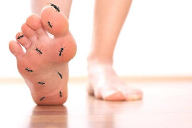 Als Diabetiker gut zu Fuß