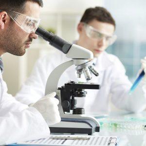 6 große Projekte in der Diabetes-Forschung